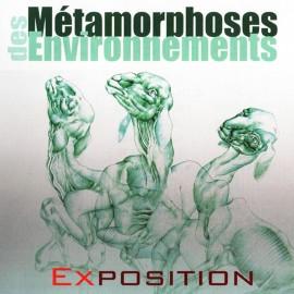 METAMORPHOSES DES ENVIRONNEMENTS